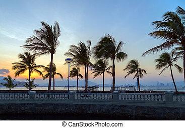tropicais, ilha, praia, paraisos