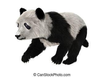 Panda Bear Cub - 3D digital render of a cute panda bear cub...