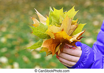 Autumn Bouquet - Image of hands girl in a blue jacket. that...