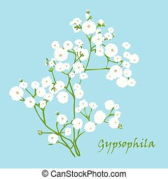 Branch of beautiful hand-drawn gypsophila, natural colors....