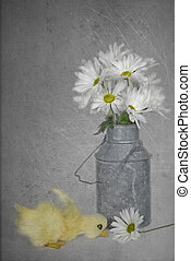 Daisy Duckling - Daisy bouquet with duckling in texture.