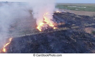AERIAL VIEW. Dry Grass Burning In Steppe - This is an aerial...