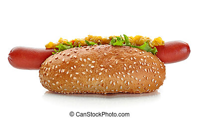 Hot Dog isolated on white background