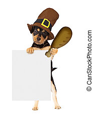 Thanksgiving Dog With Turkey Leg and Sign - Cute dog wearing...