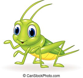 Cartoon cute green cricket isolated - Vector illustration of...