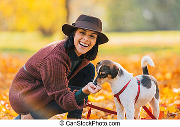 Portrait of young woman feeding dog in autumn park -...