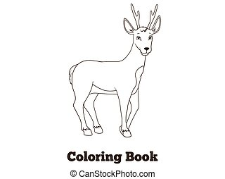 Coloring book forest animal roe deer cartoon for children...