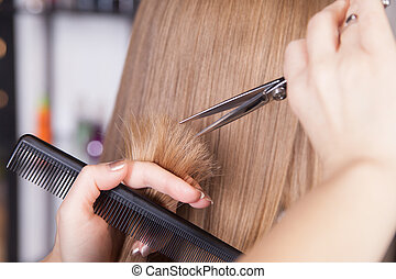 Hairdresser cut blond hair of a woman Close-up