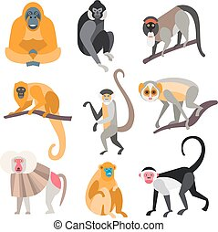 Set of Primates and Monkeys Vector Illustration - Collection...