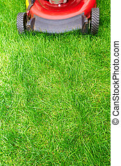 Lawn mower - Lawn mower cutting green grass in...