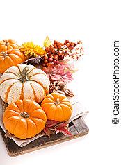 Pumpkin still life isolated on white - Pumpkin still life...
