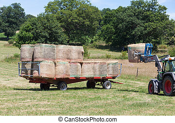 Farmer loading round hay bales onto a trailer