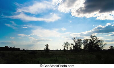 Landscape, clouds moving over a field with trees. Time Lapse