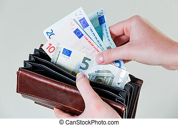 wallet with euro notes - in a purse there are several euro...
