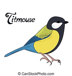 Bird titmouse vector illustration - Bird titmouse cartoon...