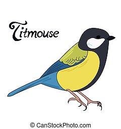 Bird titmouse vector illustration - Bird titmouse cartoon...