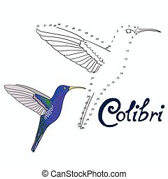 Educational game connect dots to draw colibri bird -...