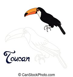 Educational game connect dots to draw toucan bird -...