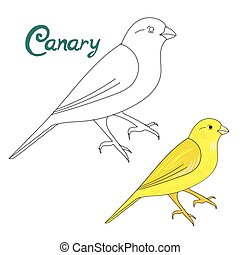Educational game connect dots to draw canary bird -...
