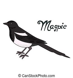 Bird magpie vector illustration - Bird magpie cartoon doodle...