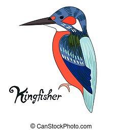 Bird kingfisher vector illustration - Bird kingfisher...