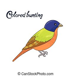 Bird colored bunting vector illustration - Bird colored...