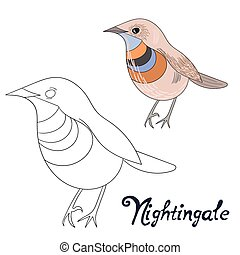Educational game coloring book nightingale bird cartoon...