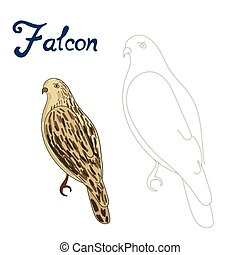 Educational game connect dots to draw falcon bird -...