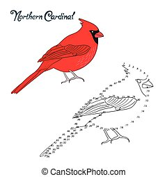 Educational game connect dots draw cardinal bird -...