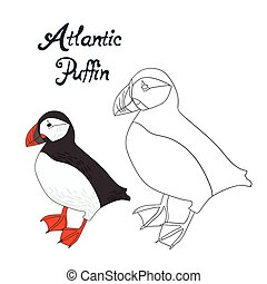 Educational game coloring book puffin bird - Educational...