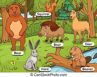 Forest cartoon animals with names vector