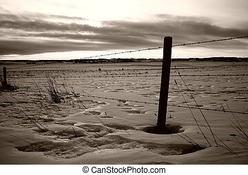 Barb-wire fenceline - Sepia-toned fenceline in the snowy...