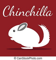 Chinchilla Vector illustration Pet icon in flat style design...
