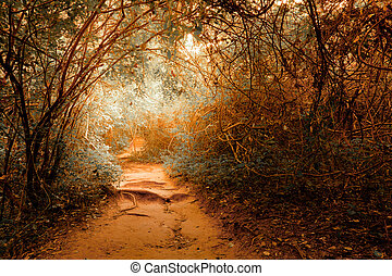 Fantasy landscape at tropical jungle forest with tunnel -...