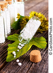 Homeopathic globules - Homeopathic lactose sugar globules on...
