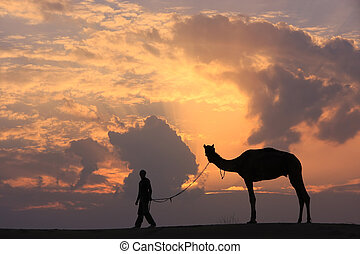 Silhouetted person with a camel at sunset, Thar desert near...