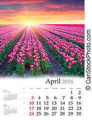 Calendar 2016 April Colorful spring morning with a fiels of...