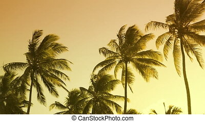 Vibrant colors palm tree summer landscape - Vibrant colors...