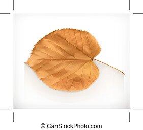 Dry leaf icon - Dry leaf, autumn icon