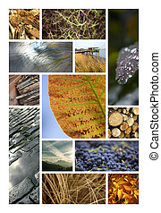 Images of Autumn - Landscapes and nature in Autumn on a...