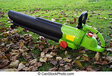 Leaf blower lying in the grass and leaves.