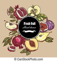Hand drawn fruits collection Botanical banner set Vector...