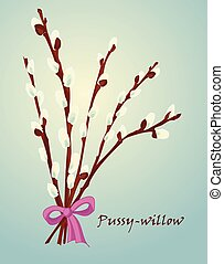 Beautiful pussy willow branches