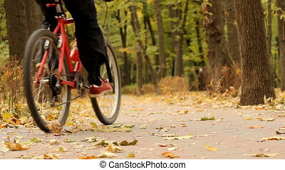riding a bicycle in autumn park