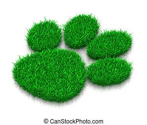 Dog Grass Footprint