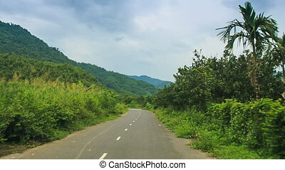 camera moves along country road past tropical plants -...
