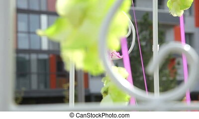 Flowers on a ribbon fluttering in the wind