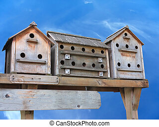 Old wooden starling nesting boxes bird house over blue sky