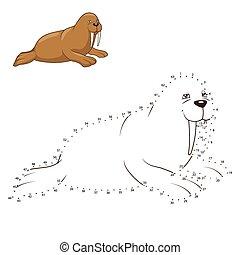 desenhar, Ilustração, vetorial,  animal, aprender, morsa