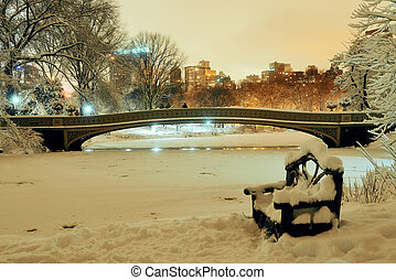 Central Park winter with frozen lake and chair at night in...